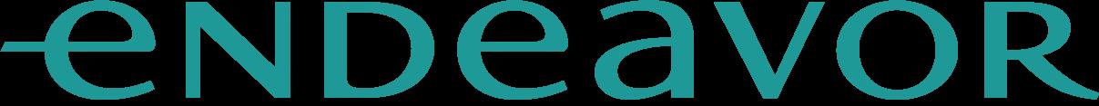 Endeavor – Scale Fintech