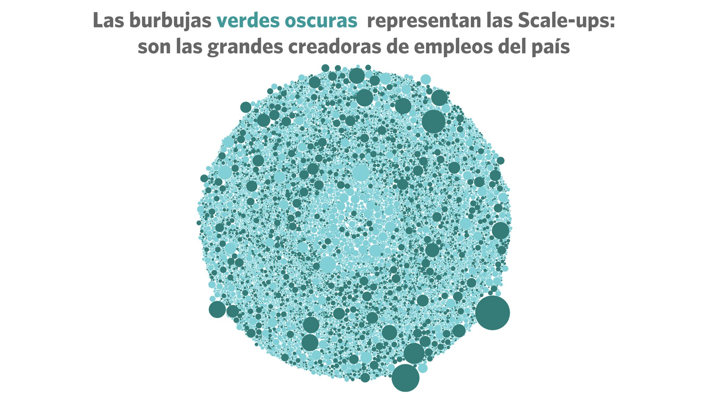 20201016-Scaleups-GIF_Burbujas-Slide3