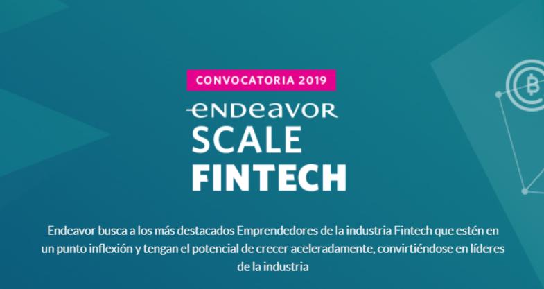 Endeavor Scale Fintech