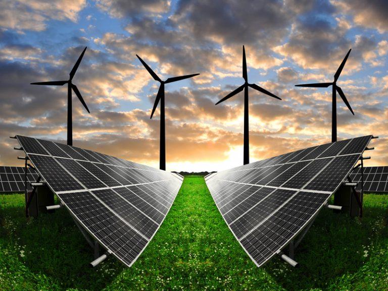 Sustentabilidad: más que una moda, una necesidad